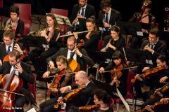 OTO - Bando di Audizione per il ruolo di Violino