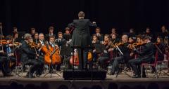 OTO - Bando di Audizione per il ruolo di Violoncello